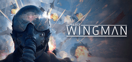 Project Wingman PC Game Free Download